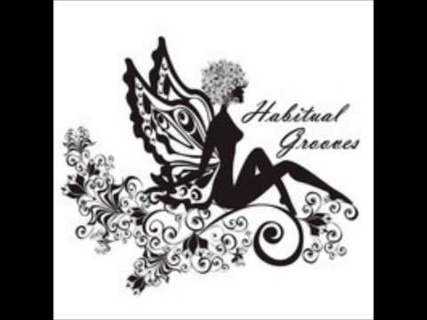 Habitual Grooves - Showcase Mix 2013 mixed by DH7