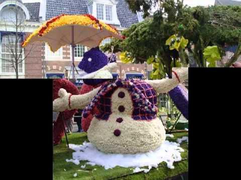 Фестиваль цветов в Голландии.mp4