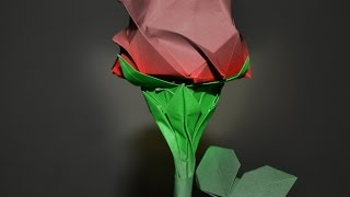 Origami: Calyx ( for Kawasaki Rose )