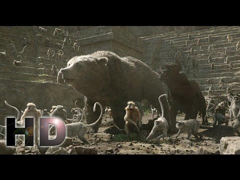 Download The Jungle Book (2016) - Baloo And Bagheera Escape Mowgli Scene | Hollywood | MovieClips In Hindi HD