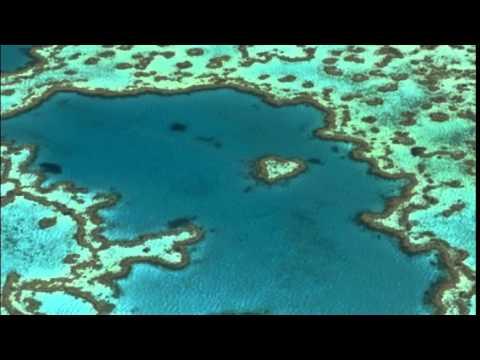 Unesco reconsidering Great Barrier Reef heritage status