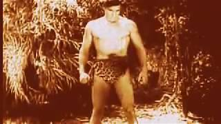 Tarzan The Fearless Full Movie 1933