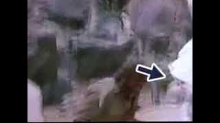 Finally We Found famous movie sholay Thakur Hand
