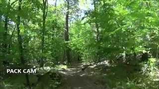 Hiking Arcadia Wildlife Managment Area In Rhode Island