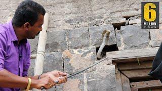 ऐसा रेस्क्यू ऑपरेशन आपने कभी नही देखा होगा   Very Dangerous cobra snake Rescue operation from india