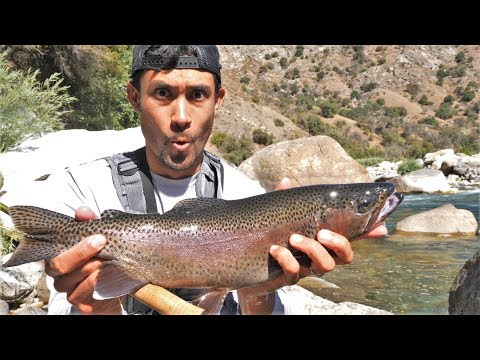 SOLO Deep Country Fishing, Biking, Camping (Fish Of A Lifetime!)