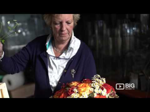Sophie Hanna Flowers Florist Shop in London UK for Floral Design and Bouquet