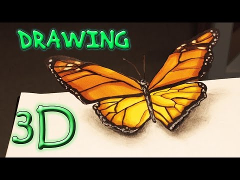 3D BUTTERFLY SPEED DRAWING Illusion / Schmetterling Zeichnen