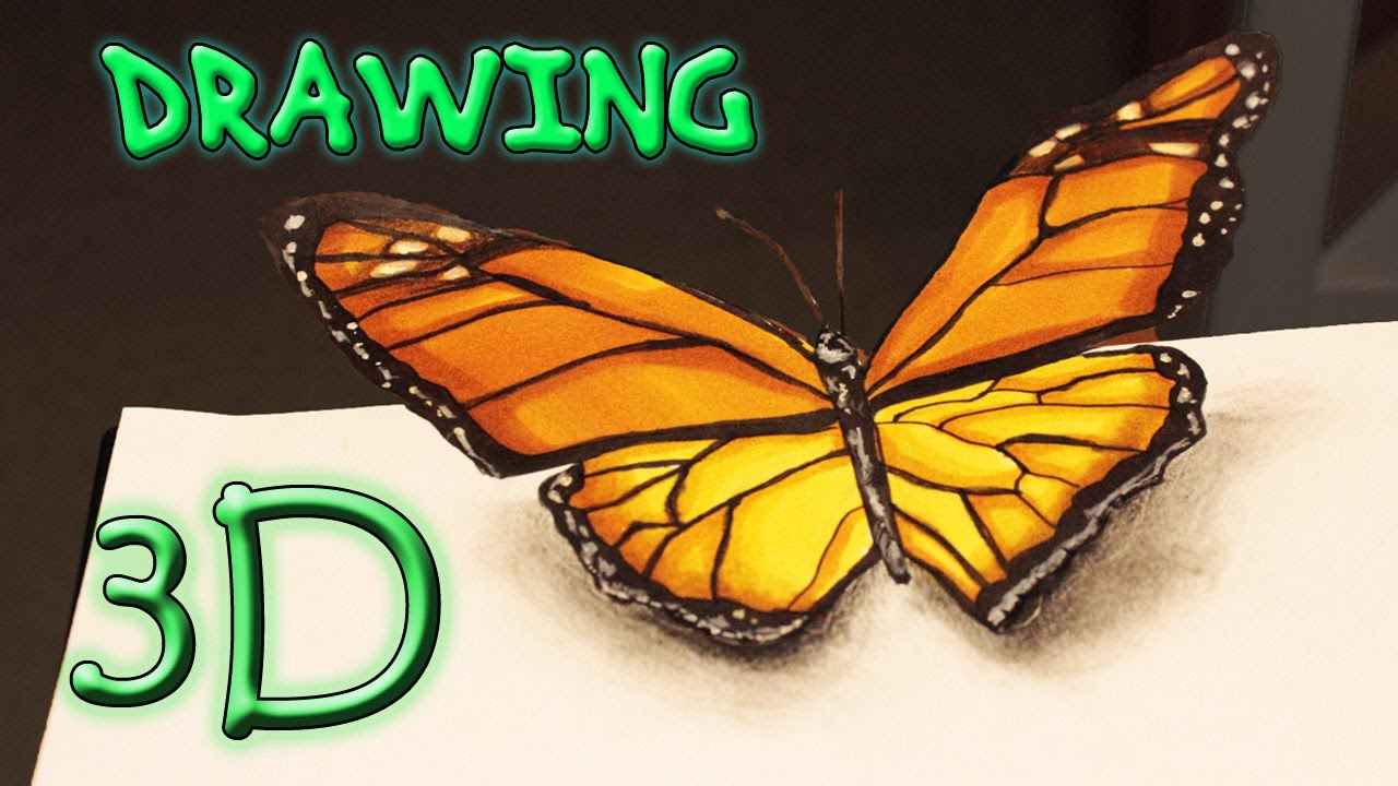 3d butterfly speed drawing illusion schmetterling for Schmetterling bastelvorlage