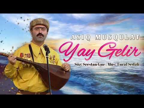 Asiq Musqulat - \