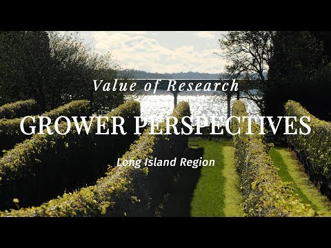 Grower Perspectives On Research: Long Island