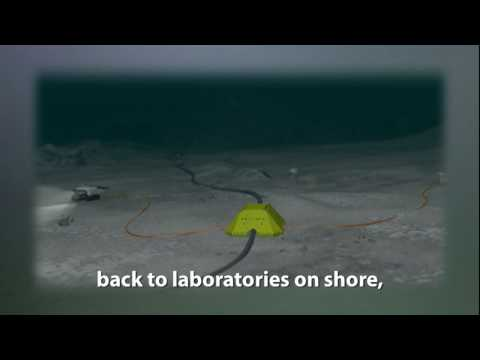 (Subtitled) The VENUS Undersea Laboratory