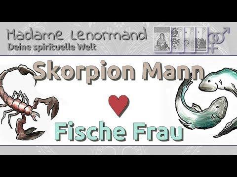 fische frau skorpion mann
