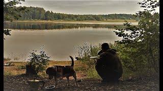 Рыбалка с Ночёвкой! Потрясающий отдых И Отличный Клёв! Шаурма На Костре!