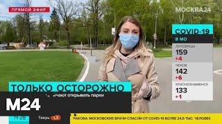 В Подмосковье начинают открывать парки - Москва 24