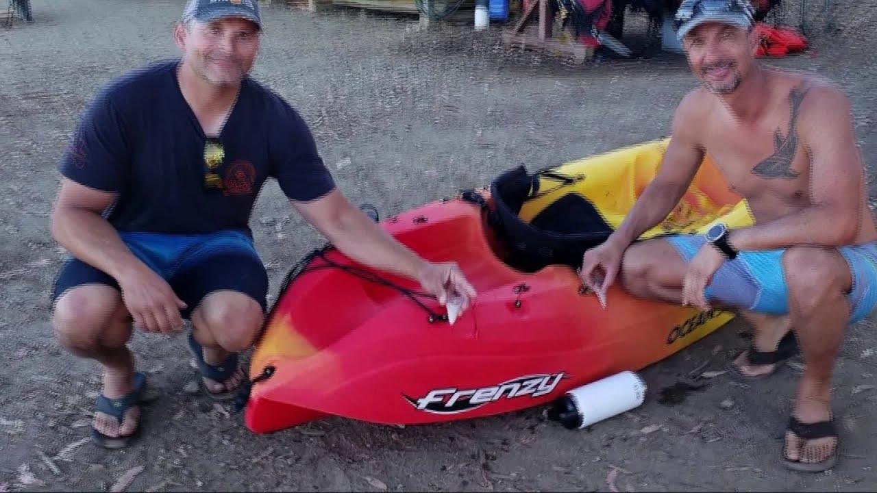 Enormous Great White Shark Bites San Diego Man S Kayak Leaving Behind 2 Giant Teeth