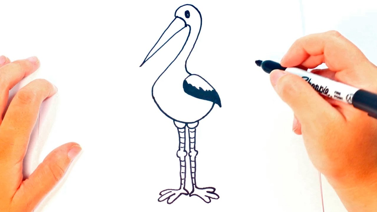 C mo dibujar una cig e a paso a paso dibujo f cil de for Comedor facil de dibujar
