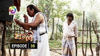 පාලි | Paali Episode 35 |  සතියේ දිනවල  රාත්රී 10.00 ට.. Thumbnail