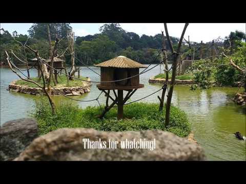 The Zoo: A Little Trip In São Paulo - Brazil