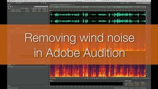 Quick Tip: Removing wind noise from video footage in Adobe Audition