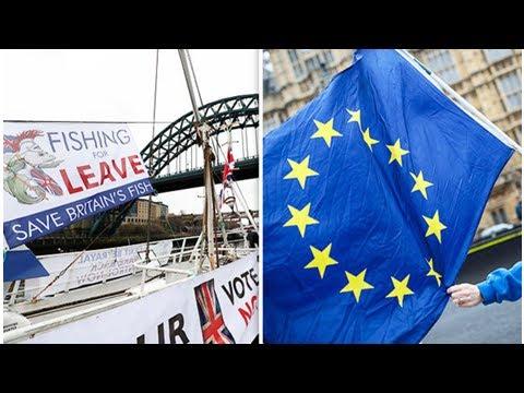 Brexit bombshell: SHAMEFUL EU deal leaves fisheries 'going BUST', WARNS UK fisherman