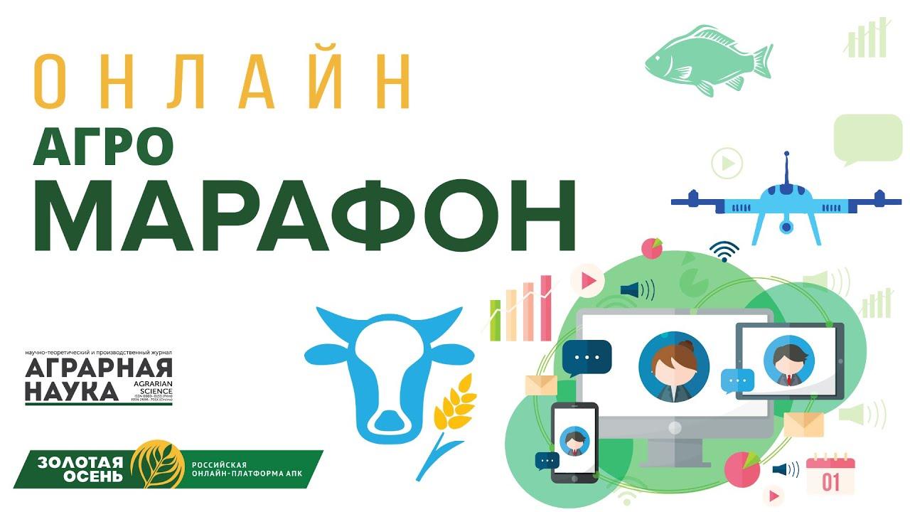 Инструменты digital-продвижения АПК-компаний