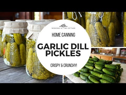 The Best GARLIC DILL PICKLES Recipe!