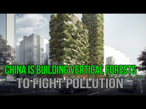 China is Building Vertical Forests to Fight Pollution