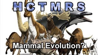 How Creationism Taught Me Real Science 64 Mammal Evolution?