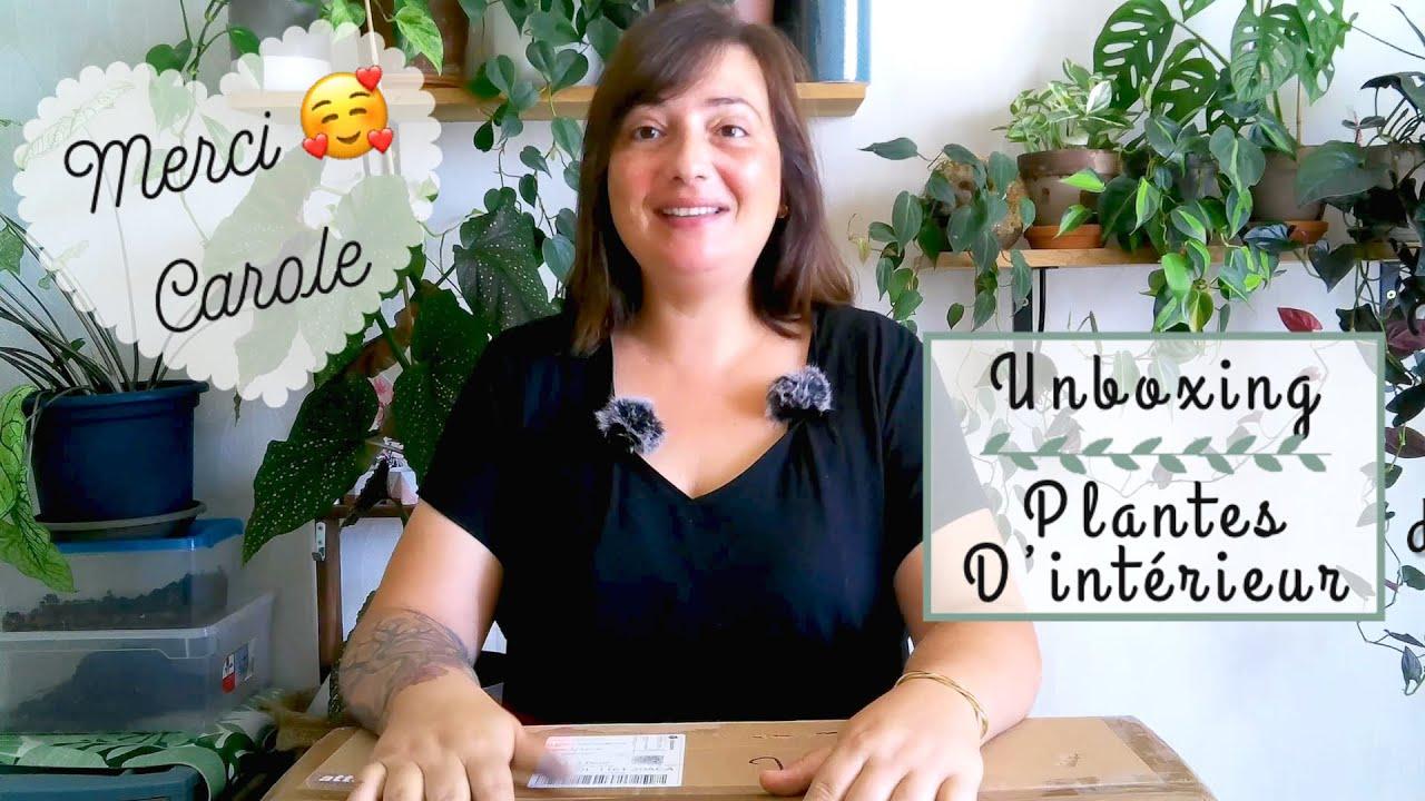 🌿UNBOXING : QUAND CAROLE M'ENVOIE UN COLIS 🥰 | HAUL PLANTES D'INTÉRIEUR