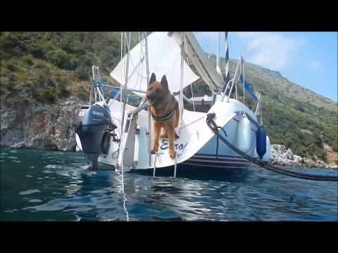 Salty Dog - Ares Al Mare - Sailing German Shepherd