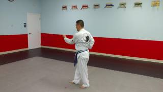 Taegeuk il jang - Yellow Belt Form