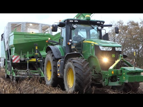 John Deere 7230R Working Hard Harvesting Potatoes W/ AVR Spirit 9100 | Danish Agriculture