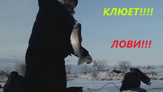 Зимняя рыбалка в Канаде Пайлот Маунд Манитоба Goudney Reservoir Pilot Mound Manitoba ice fishing