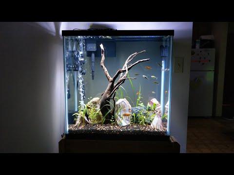 new-aquarium!!!-30-gallon-extra-tall!!!