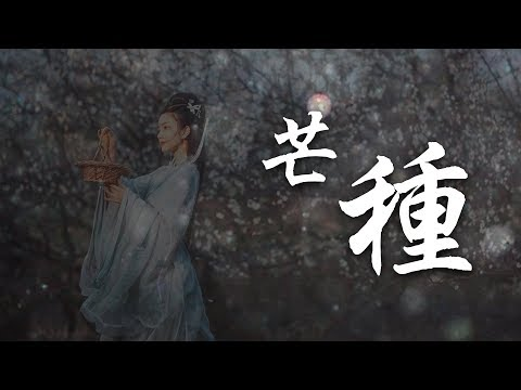 芒種 音闕詩聽、趙方婧【完整MV】