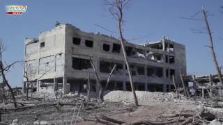 21+  Aleppo military academies. Interim results of the