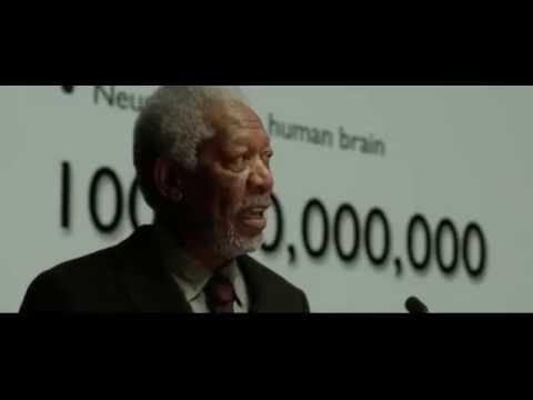 Download Lucy- Fragment- 3 (Accès à 20%): film sur les origines des capacités cérébrales des humains.