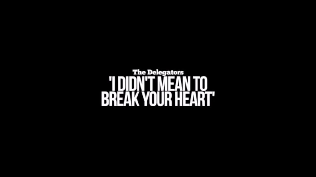 The Delegators I Didnt Mean To Break Your Heart Album Launch Party Video