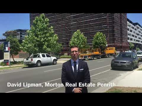 Thornton Stage 3A - investor update #1