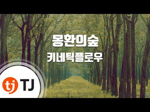[TJ노래방] 몽환의숲 - 키네틱플로우 (Kinetic Flow) / TJ Karaoke