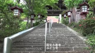 武田信典 - JapaneseClass.jp