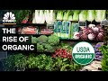 The Truth About Buying Organic Food