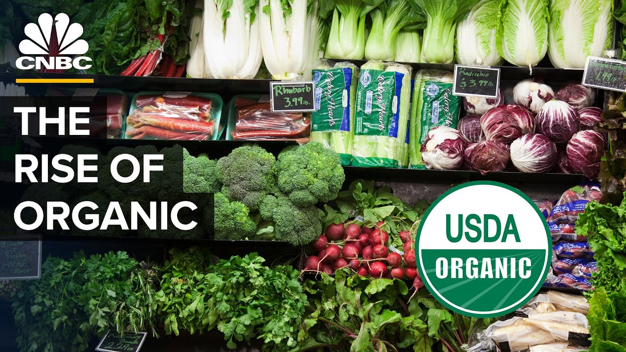Download The Truth About Buying Organic Food