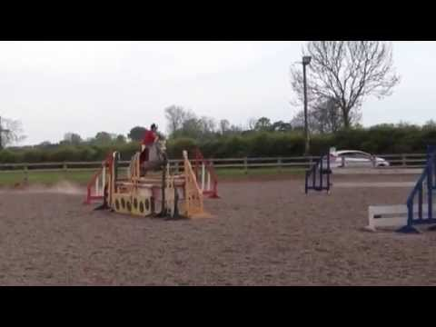 2ft9/3ft showjumping @ diamond EC!