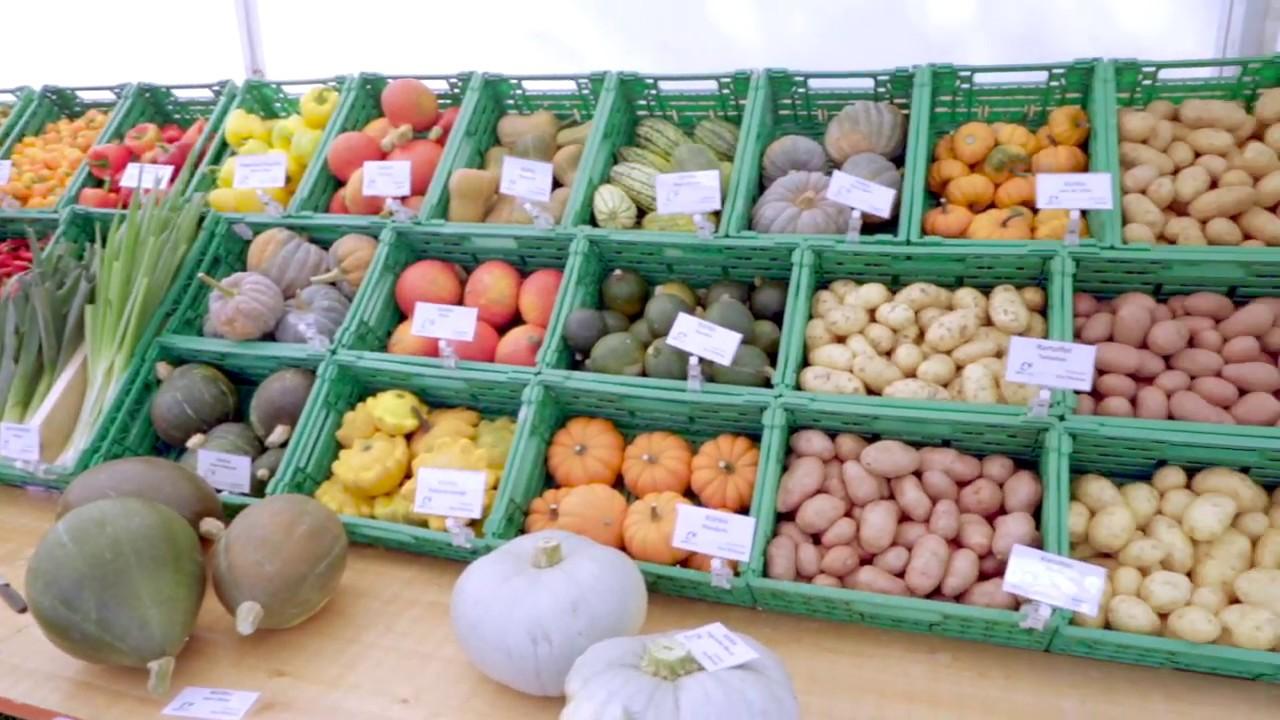 1001 Gemüse & Co