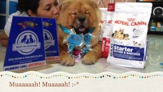 Antipolo Dog Show And Fun Match 2014 (may24,2014)
