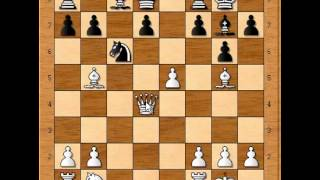 Judit Polgar Thrashes Angelova !!