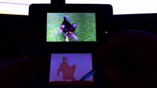 3DS Launch Day - Nintendogs + Cats French Bulldog & New Friends