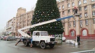 На площади Павших Борцов украшают елку